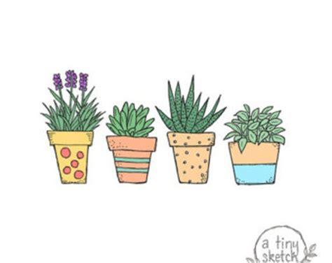 Essay about flower garden